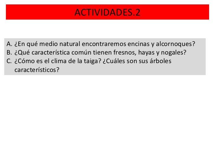 ACTIVIDADES.2A. ¿En qué medio natural encontraremos encinas y alcornoques?B. ¿Qué característica común tienen fresnos, hay...