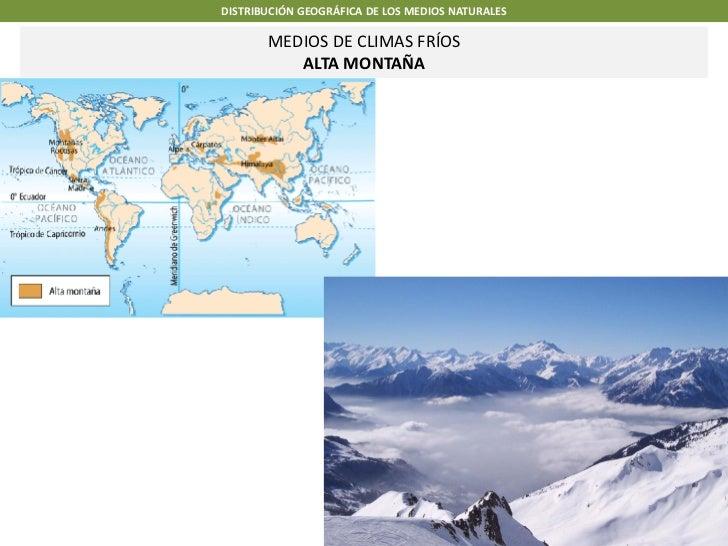 DISTRIBUCIÓN GEOGRÁFICA DE LOS MEDIOS NATURALES       MEDIOS DE CLIMAS FRÍOS          ALTA MONTAÑA