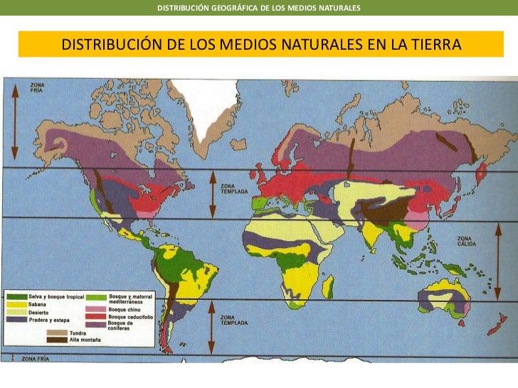 DISTRIBUCIÓN GEOGRÁFICA DE LOS MEDIOS NATURALESDISTRIBUCIÓN DE LOS MEDIOS NATURALES EN LA TIERRA