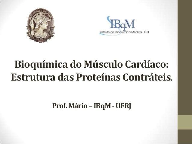Bioquímica do Músculo Cardíaco:Estrutura das Proteínas Contráteis.        Prof. Mário – IBqM - UFRJ