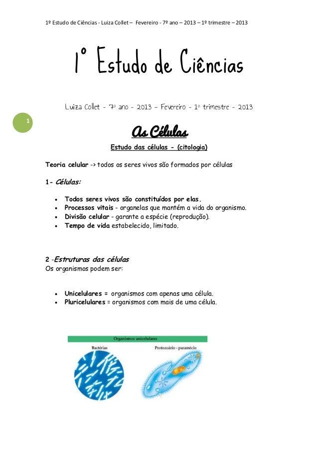 1º Estudo de Ciências - Luiza Collet – Fevereiro - 7º ano – 2013 – 1º trimestre – 2013  1º Estudo de Ciências Luiza Collet...