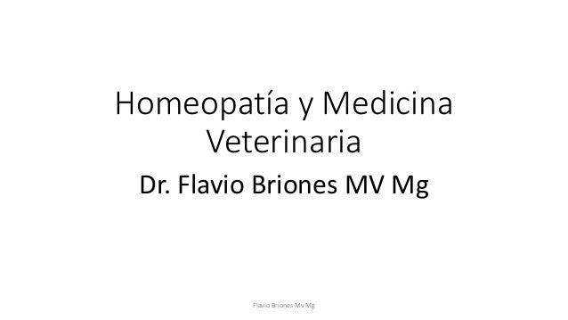 Homeopatía y Medicina  Veterinaria  Dr. Flavio Briones MV Mg  Flavio Briones Mv Mg