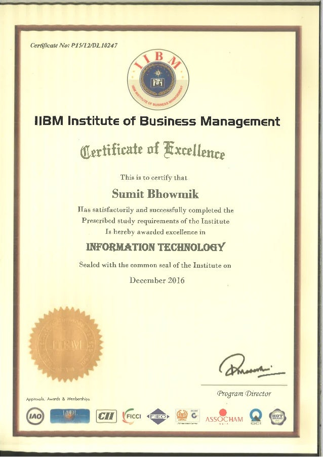 Iibm Executive Mba Course Completion Certificate