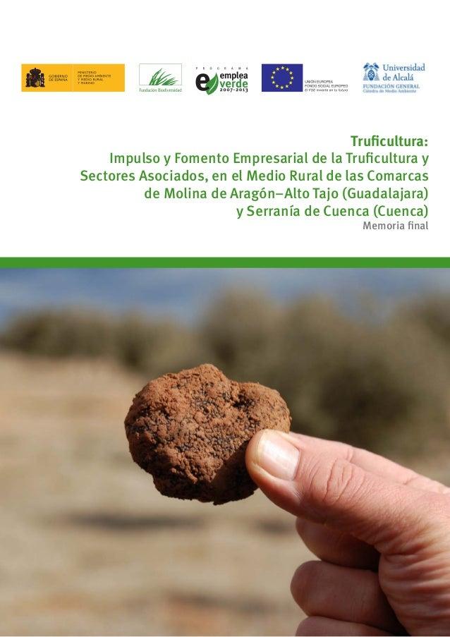1 Truficultura: Impulso y Fomento Empresarial de la Truficultura y Sectores Asociados, en el Medio Rural de las Comarcas d...