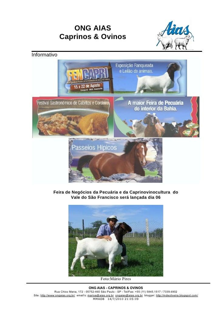 ONG AIAS                    Caprinos & Ovinos  Informativo                   Feira de Negócios da Pecuária e da Caprinovin...