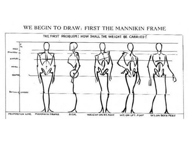 How To Draw The Figure In Proportion