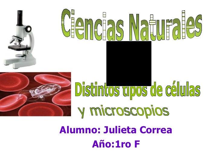 Alumno: Julieta Correa Año:1ro F Ciencias Naturales Distintos tipos de células y microscopios