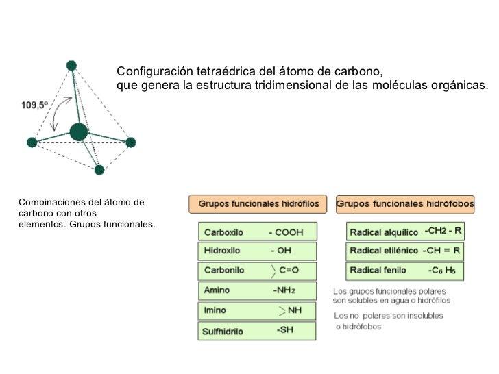 Configuración tetraédrica del átomo de carbono,                     que genera la estructura tridimensional de las molécul...