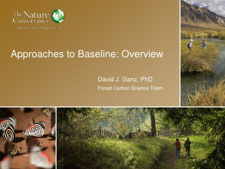 Approaches to Baseline: OverviewDavid J. Ganz, PhDForest Carbon Science Team<br />