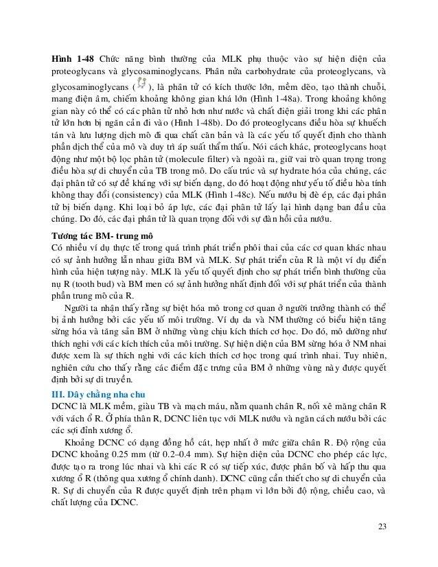 23 Hình 1-48 Chöùc naêng bình thöôøng cuûa MLK phuï thuoäc vaøo söï hieän dieän cuûa proteoglycans vaø glycosaminoglycans....
