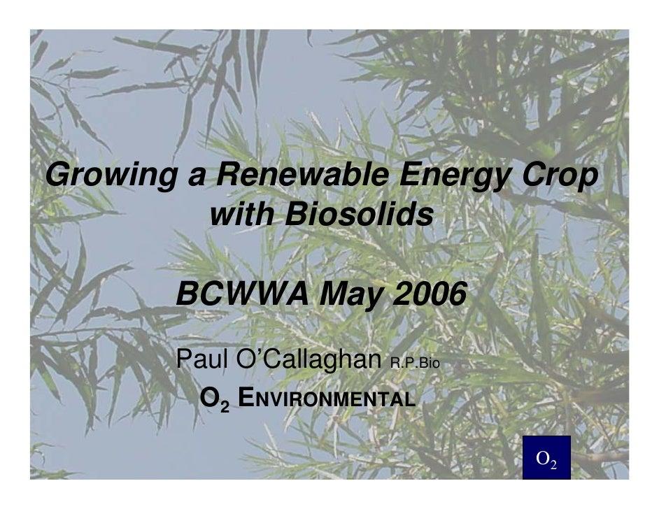 Growing a Renewable Energy Crop          with Biosolids         BCWWA May 2006        Paul O'Callaghan R.P.Bio         O2 ...