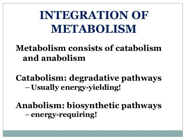 INTEGRATION OF METABOLISM Metabolism consists of catabolism and anabolism Catabolism: degradative pathways – Usually energ...