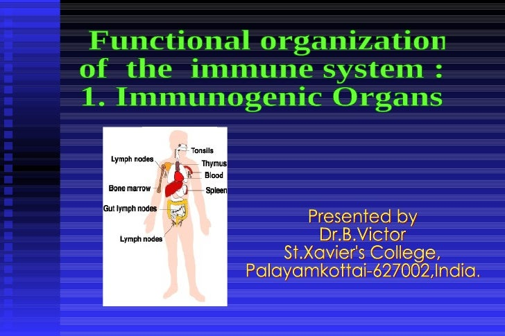 Presented by Dr.B.Victor St.Xavier's College,  Palayamkottai-627002,India. Functional organization  of  the  immune system...