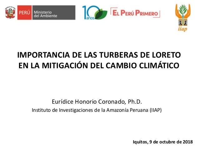 IMPORTANCIA DE LAS TURBERAS DE LORETO EN LA MITIGACIÓN DEL CAMBIO CLIMÁTICO Eurídice Honorio Coronado, Ph.D. Instituto de ...