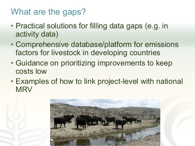 What are the gaps? • Practical solutions for filling data gaps (e.g. in activity data) • Comprehensive database/platform f...