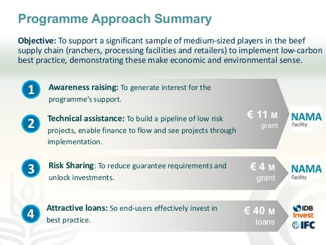 Programme Approach Summary Objective: To support a significant sample of medium-sized players in the beef supply chain (ra...