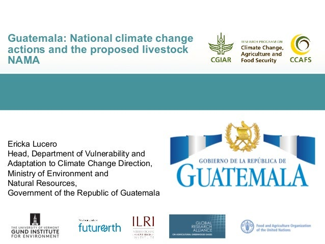 Guatemala: National climate change actions and the proposed livestock NAMA Ericka Lucero Head, Department of Vulnerability...