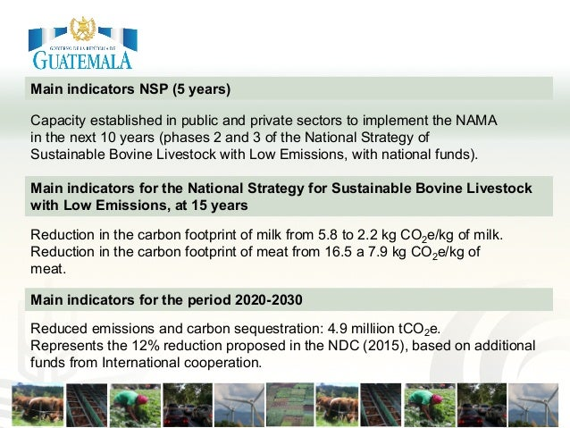 Main indicators NSP (5 years) Capacity established in public and private sectors to implement the NAMA in the next 10 year...