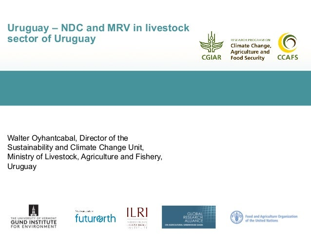 Uruguay – NDC and MRV in livestock sector of Uruguay Walter Oyhantcabal, Director of the Sustainability and Climate Change...