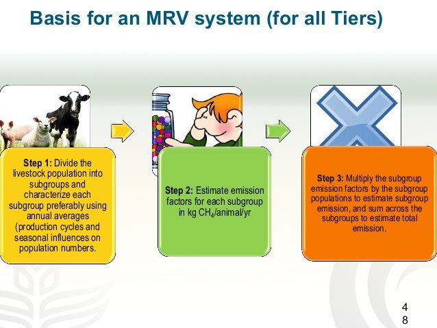 Basis for an MRV system (for all Tiers) Step 1: Divide the livestock population into subgroups and characterize each subgr...