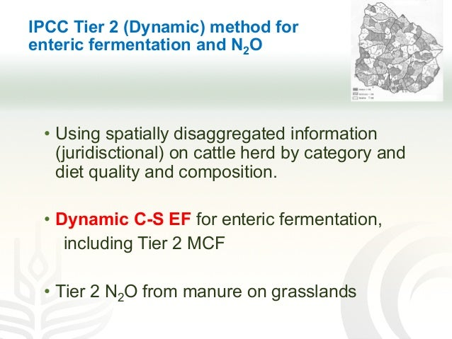IPCC Tier 2 (Dynamic) method for enteric fermentation and N2O • Using spatially disaggregated information (juridisctional)...
