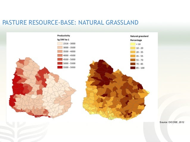 PASTURE RESOURCE-BASE: NATURAL GRASSLAND Source: DICOSE, 2012