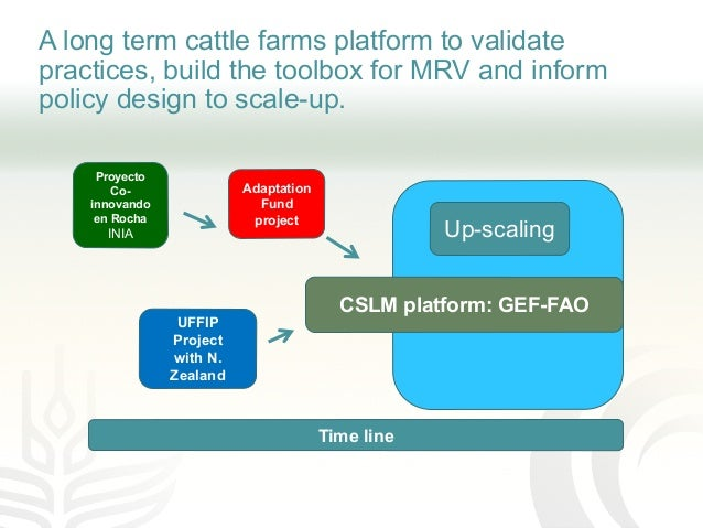 A long term cattle farms platform to validate practices, build the toolbox for MRV and inform policy design to scale-up. P...