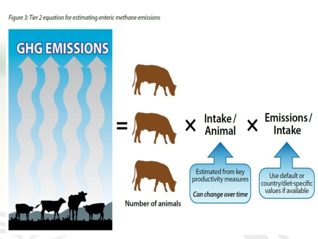 However…. most countries are still working on improving their inventories of livestock emissions • Accurate national GHG i...