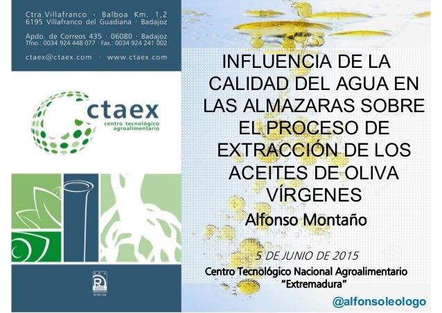 INFLUENCIA DE LA CALIDAD DEL AGUA EN LAS ALMAZARAS SOBRE EL PROCESO DE EXTRACCIÓN DE LOS ACEITES DE OLIVA VÍRGENES Alfonso...