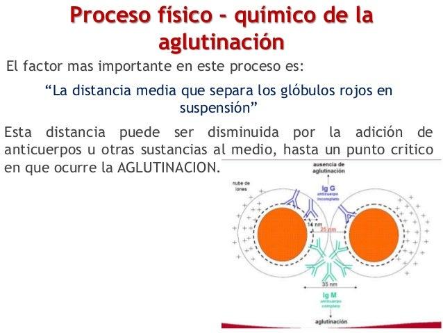 """Proceso físico - químico de la aglutinación El factor mas importante en este proceso es: """"La distancia media que separa lo..."""