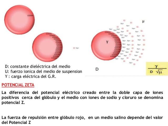 POTENCIAL ZETA La diferencia del potencial eléctrico creado entre la doble capa de iones positivos cerca del glóbulo y el ...