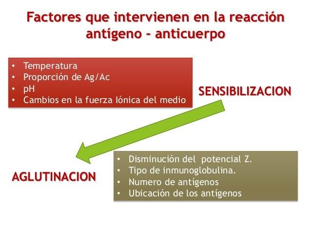 Factores que intervienen en la reacción antígeno - anticuerpo • Disminución del potencial Z. • Tipo de inmunoglobulina. • ...