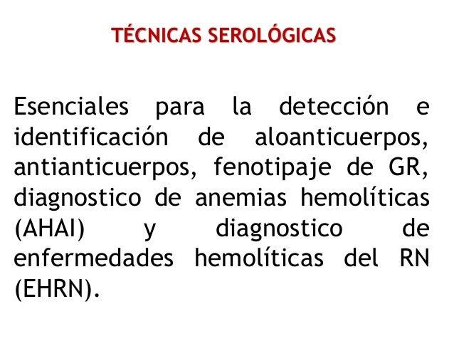 TÉCNICAS SEROLÓGICAS Esenciales para la detección e identificación de aloanticuerpos, antianticuerpos, fenotipaje de GR, d...