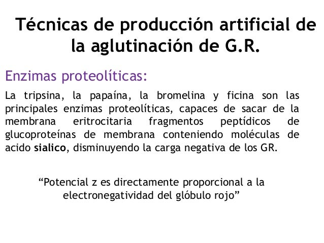 Enzimas proteolíticas: La tripsina, la papaína, la bromelina y ficina son las principales enzimas proteolíticas, capaces d...