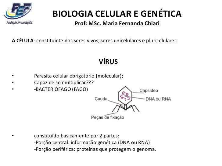 BIOLOGIA CELULAR E GENÉTICA                            Prof: MSc. Maria Fernanda ChiariA CÉLULA: constituinte dos seres vi...