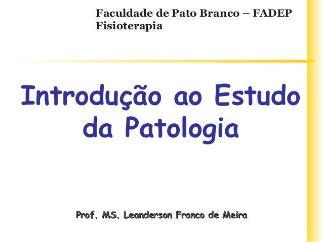 Prof. MS. Leanderson Franco de MeiraProf. MS. Leanderson Franco de Meira Faculdade de Pato Branco – FADEP Fisioterapia Int...