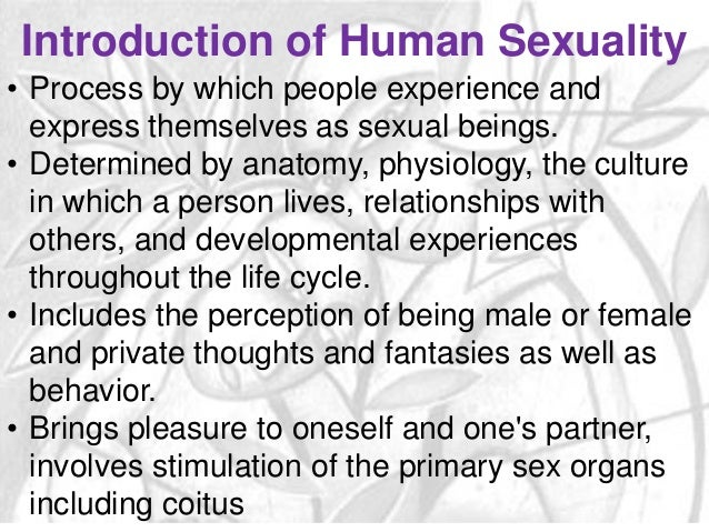 Sexually experienced definition
