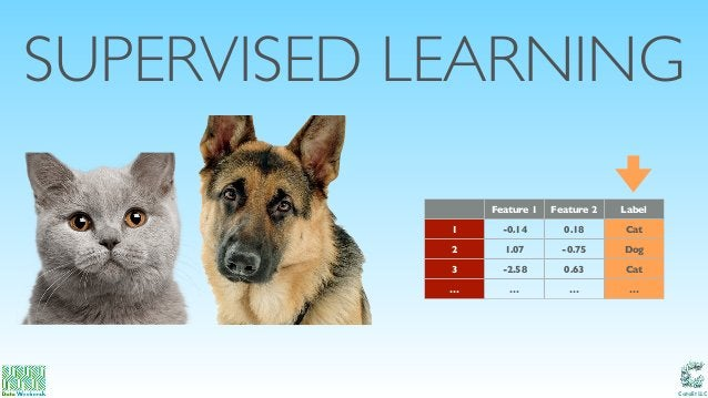 Catalit LLC SUPERVISED LEARNING Feature 1 Feature 2 Label 1 -0.14 0.18 Cat 2 1.07 -0.75 Dog 3 -2.58 0.63 Cat … … … …