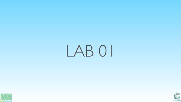 Catalit LLC LAB 01