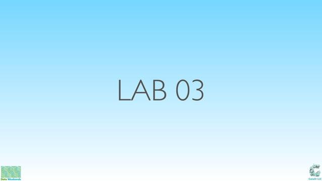 Catalit LLC LAB 03