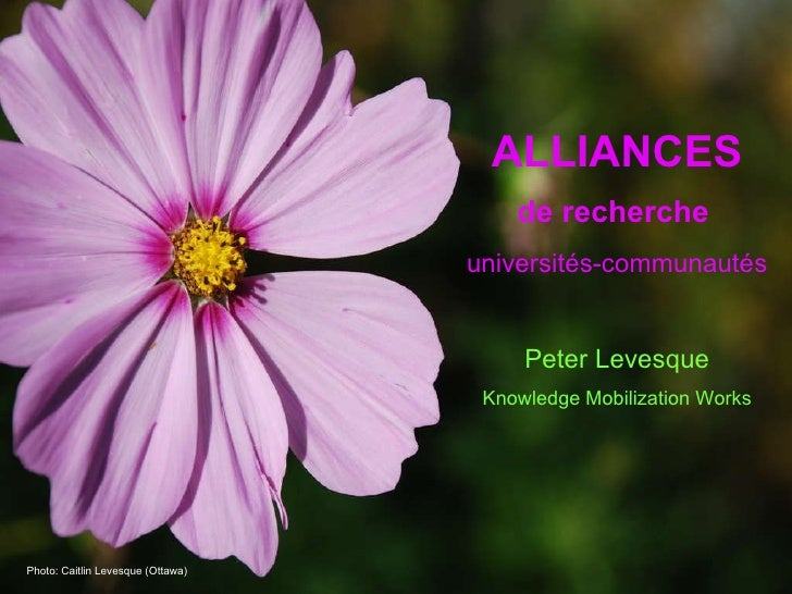 ALLIANCES de recherche   universités-communautés Peter Levesque Knowledge Mobilization Works Photo: Caitlin Levesque (Otta...