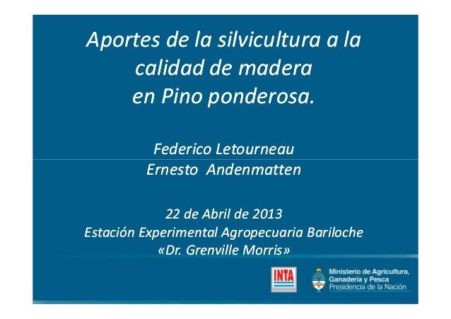 Aportes de la silvicultura a laAportes de la silvicultura a lacalidad de maderacalidad de maderaen Pino ponderosa.en Pino ...
