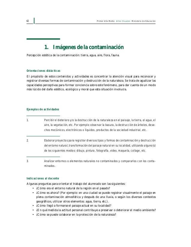 Primer Año Medio Artes Visuales Ministerio de Educación44 3. La dimensión ecológica en la historia del arte Percepción de ...