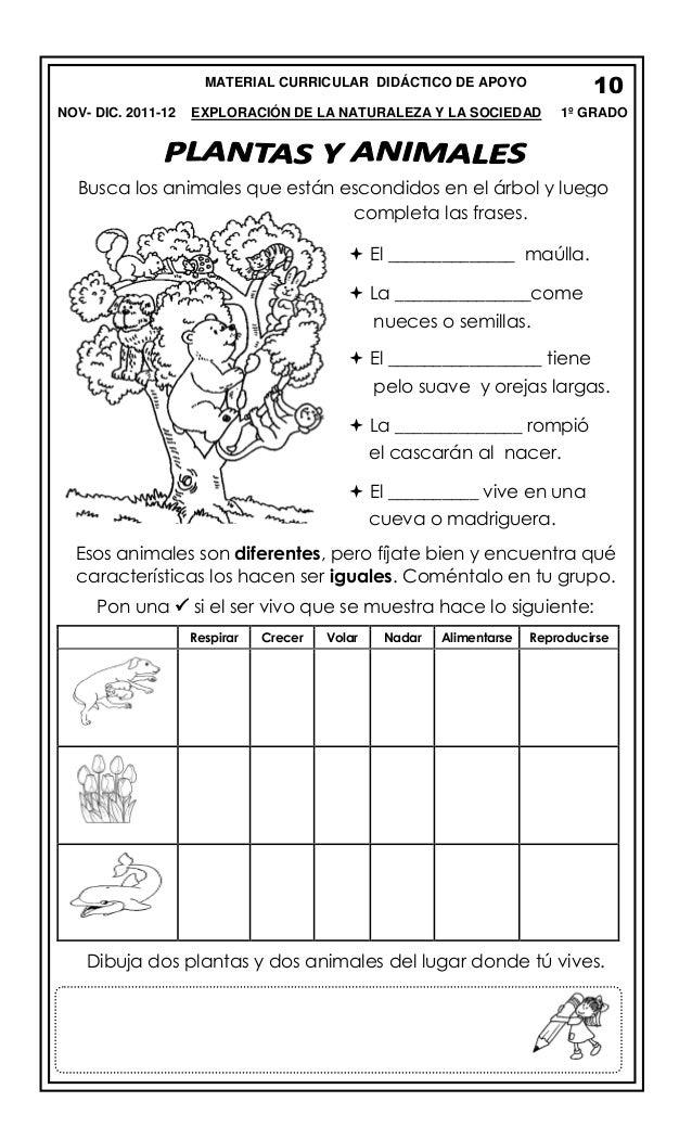 10  MATERIAL CURRICULAR DIDÁCTICO DE APOYO NOV- DIC. 2011-12  EXPLORACIÓN DE LA NATURALEZA Y LA SOCIEDAD  1º GRADO  Busca ...