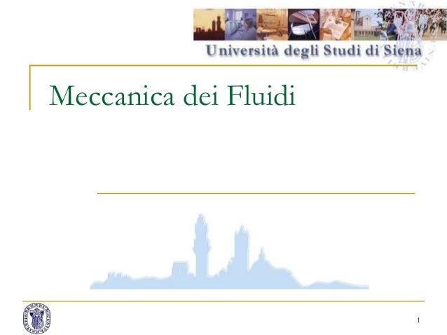 Meccanica dei Fluidi 1