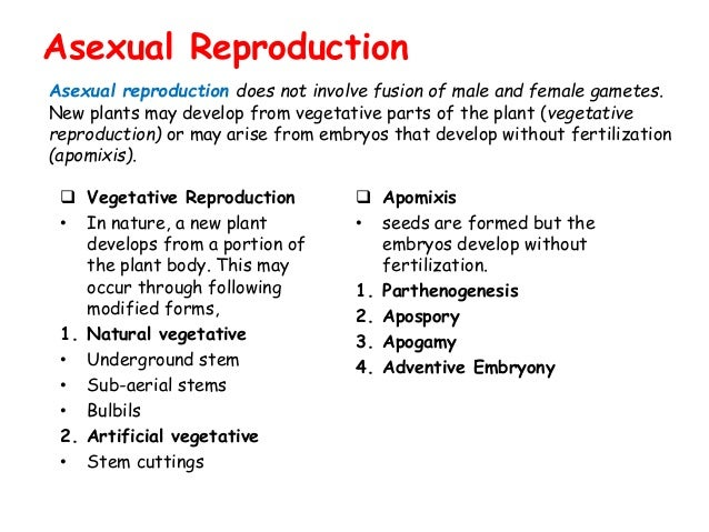 Apomixis and parthenogenesis asexual reproduction