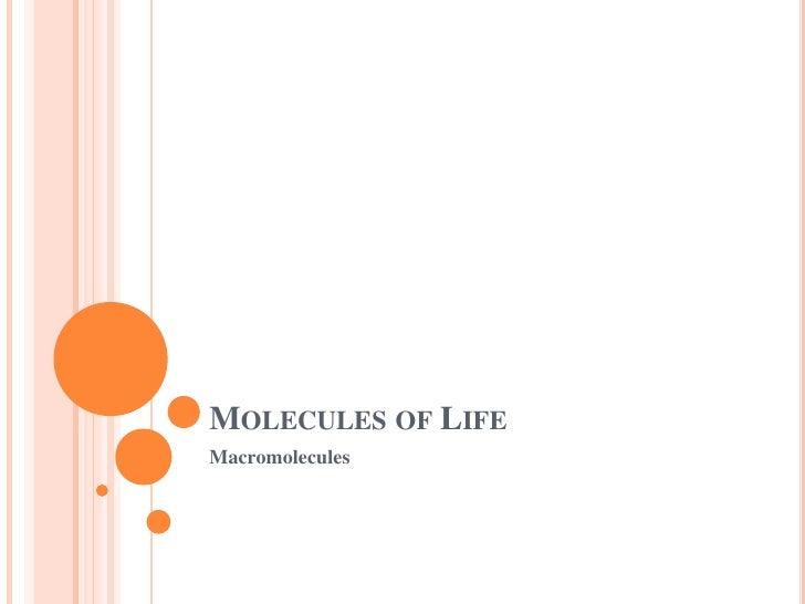 Molecules of Life<br />Macromolecules<br />