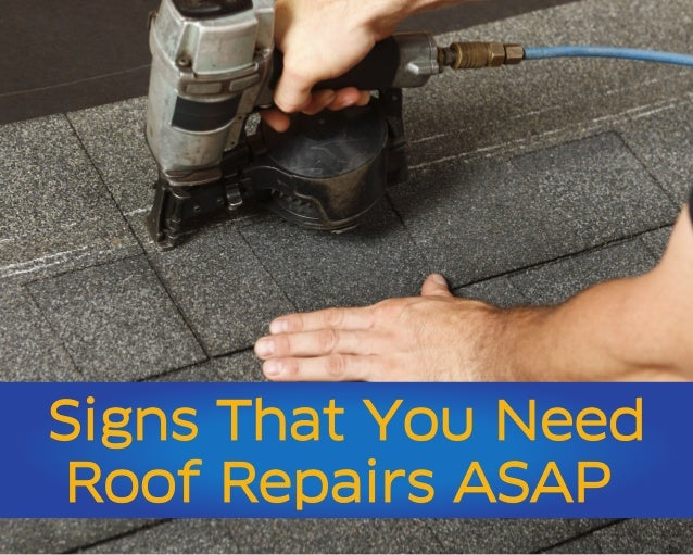 Signs That You Need Roof Repairs ASAP