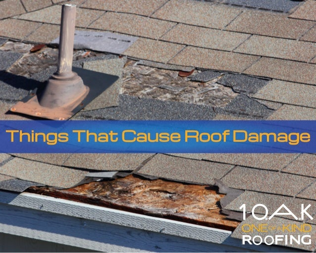 Things That Cause Roof Damage