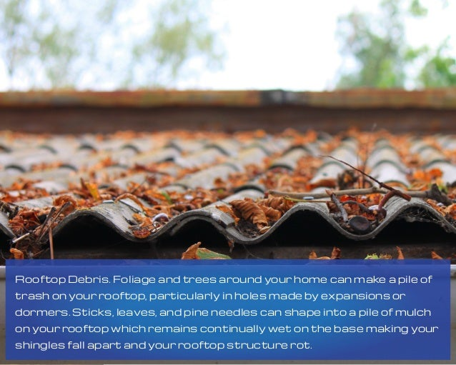 Rooftop Debris. Foliage and trees around your home can make a pile of trash on your rooftop, particularly in holes made by...